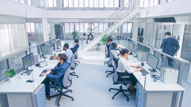 Diverse Team of Business Managers and Specialists Work on Desktop Computers with Two Rows of Tables Side by Side. Young and Motivated Business people in Modern Open Office.