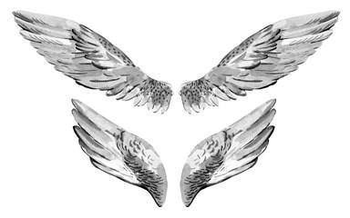 Watercolor vintage set angel wings