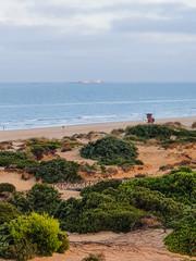 Sand dunes that give access to La Barrosa beach in Sancti Petri, Cádiz, Spain.