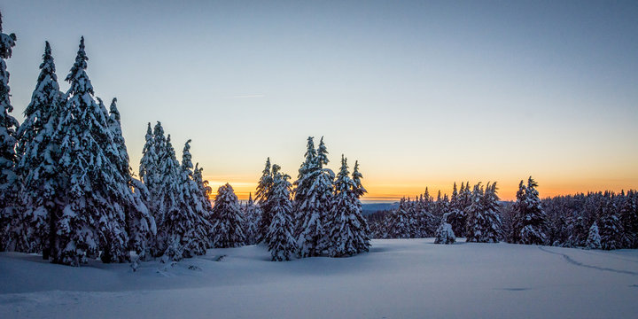 Sunset on the ski trail in Oregon