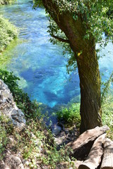 Fototapeta Błękitne Oko  żródło blue eye Albania Syri i Kalter