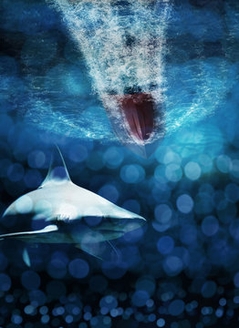 Shark lurking under a speed boat