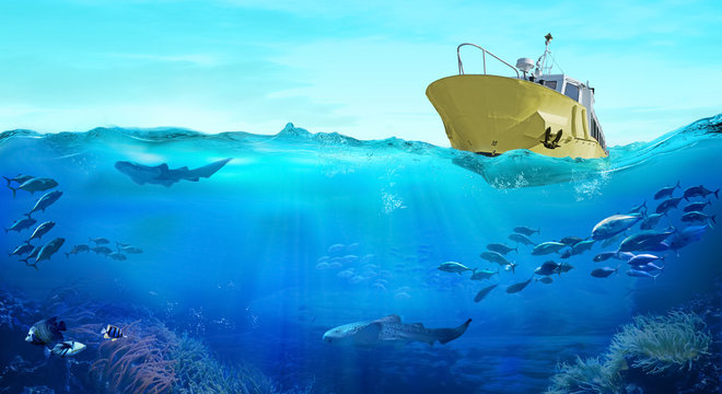 Fishing boat in the sea. Large school of fish in the ocean. Underwater world with sea animals.