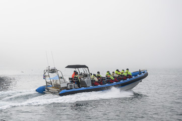 Tourists on speedboat during starting whale watching tour in foggy weather conditions