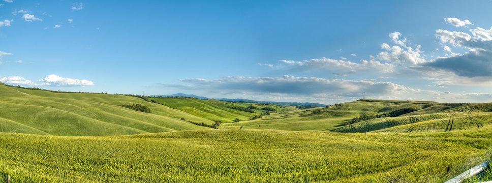 beau paysage de colline en  Toscane en Italie au printemps avec champ de blé