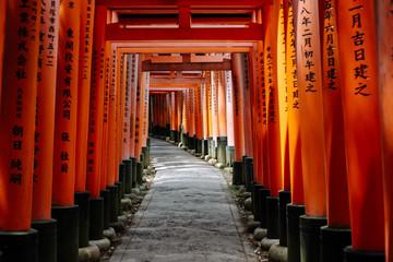 Mesmerizing shot of famous torii gates in Fushimi Inari Shrine, Kyoto, Japan