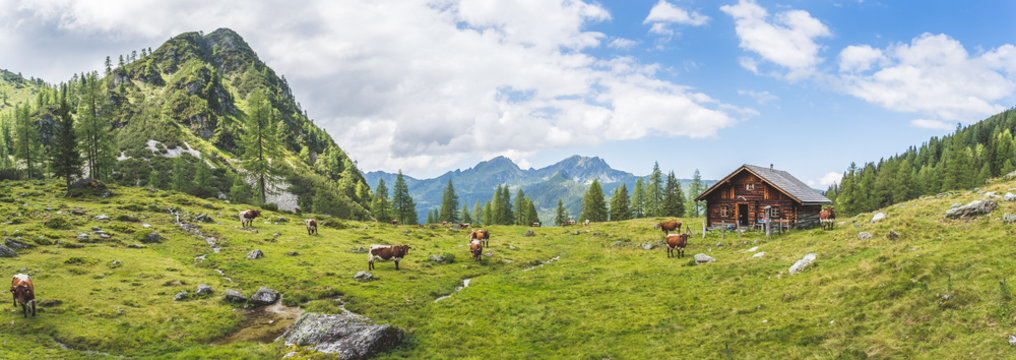 Idyllic mountain landscape in the alps: Mountain chalet, cows, meadows and blue sky