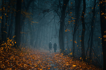 Printed roller blinds Gray traffic Elderly couple silhouettes walking on a pathway at the autumn foggy park among high trees with yellow trees.