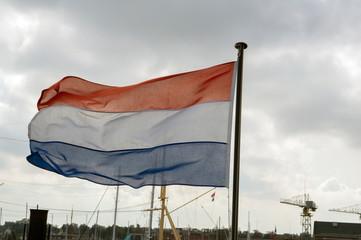 Wall Murals Dolphin Flag On The Submarine The HNLS Tonijn At The Willemsoord Complex Den Helder The Netherlands 23 September 2019