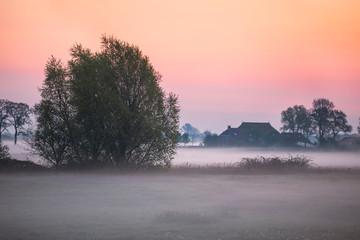 foggy sunrise on farmland