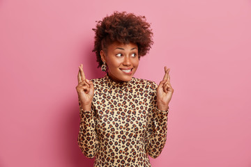 Smiling hopeful fashionable woman with curly hair dressed in leopard jumper holds fingers crossed for good luck bites lips and makes wish looks to side, isolated on pink wall, waits for special moment Fotomurales