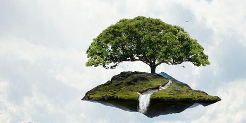 Image of tree and landscape
