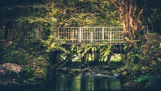 Gourgues d'asque pont vert