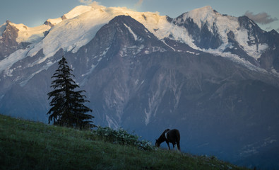 view from passy to the massive of mont blanc