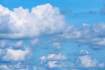 one bird fly on clear blue sky huge white cloud on sea