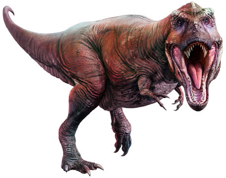Tyrannosaurus from the Cretaceous era 3D illustration