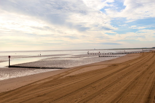 Looking along a sandy beach with vehicle tracks and the tide out