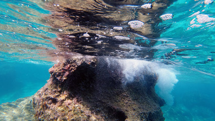 Sardinia crystal water underwater view while diving Wall mural