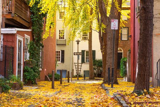 Autumn alleyway in Philadelphia, Pennsylvania, USA