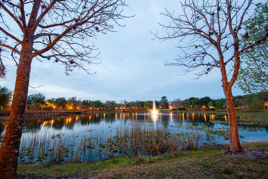 Lake Lily in Maitland, a suburb of Orlando, Florida
