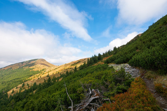 peak of the mountain strymba. carpathian landscape in autumn. path uphill. colorful scenery. clouds on the sky. sunny weather.