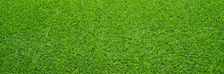 Artificial grass field meadow green. Top View Texture.