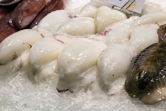 Sale of the white sepia, calamari and other seafoods on the market.