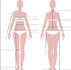 Female body for measuring the size vector illustration