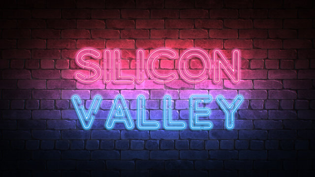 Silicon Valley neon sign. purple and blue glow. neon text. Brick wall lit by neon lamps. Night lighting on the wall. 3d illustration.