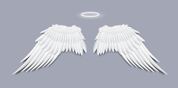 Angels white feather wings with halo, realistic vector illustration isolated.