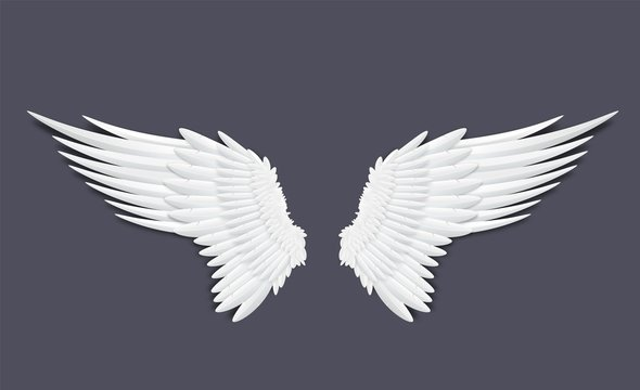 Template of feathers angel or bird wings realistic vector illustration isolated.