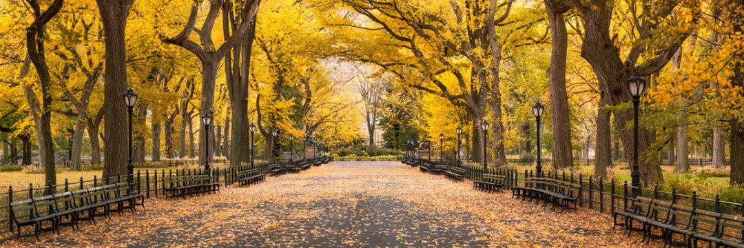 Central Park in autumn, New York City, USA