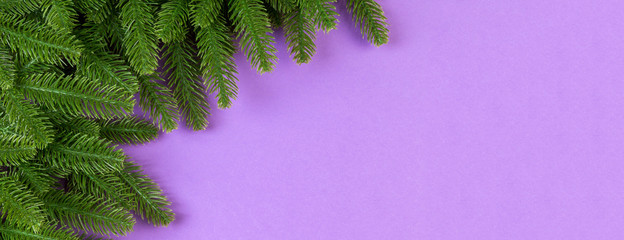 Top view Banner of colorful background made of green fir tree branches. New year holiday concept with copy space