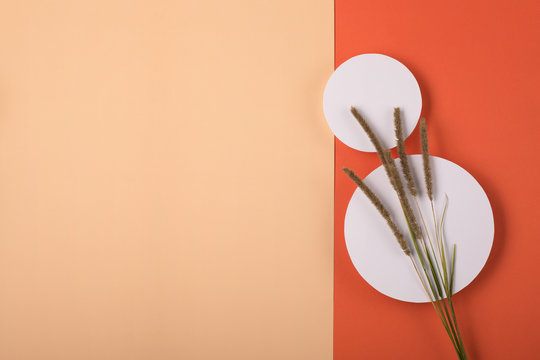 Autumn holiday concept. Flat lay style style. Holiday invitation and card mockup.