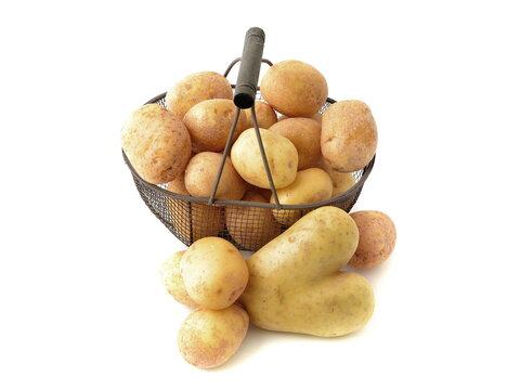 Potatoes in basket isolated on white background. Potato heart, I love potatoes.