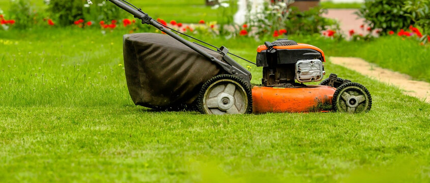 Banner. A lawn mower mows the grass in the backyard. Agricultural machinery: lawn mower for cutting grass close-up. The care of the garden. Gardening background.