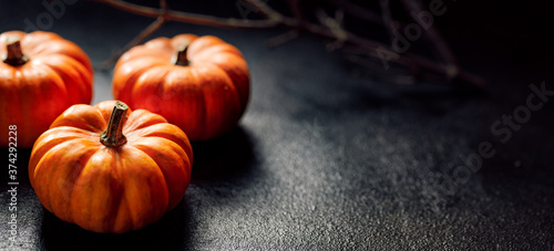 Pumpkins on a dark background, an impression on the theme of autumn and halloween with copy space