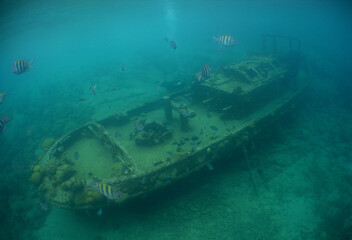 underwater ship wreck in the waters caribbean sea Curacao