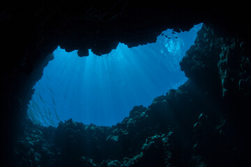 Wall Mural - Sunlight filters into a dark, underwater cave in the Republic of Palau. Palau's spectacular and diverse coral reefs are riddled with caves, caverns, and blue holes.