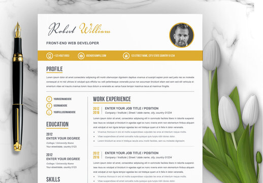 Simple and Elegant Resume Layout