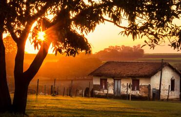 pôr-do-sol com árvore, casa velha na fazenda com e gramado verde