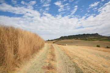 Tuscany landscape, the countryside of Maremma, Saturnia