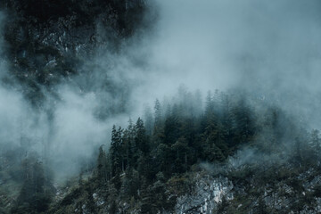 Mist and fog clouds hanging in the mountain on a rainy weather day with mountain and tree shilhouettes. Dramatic mountain view. Austrian Alps, Salzkammergut in Austria, Europe