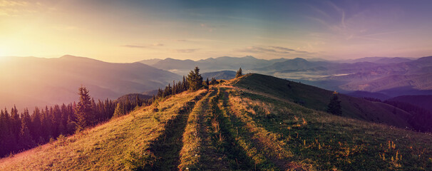 Scenic image of nature mountain landscape. stunning alpine valley with grassy, ground road during sunset. Mountain valley,  pine forest and silhouette of mountais at sunrise. Nature background photo