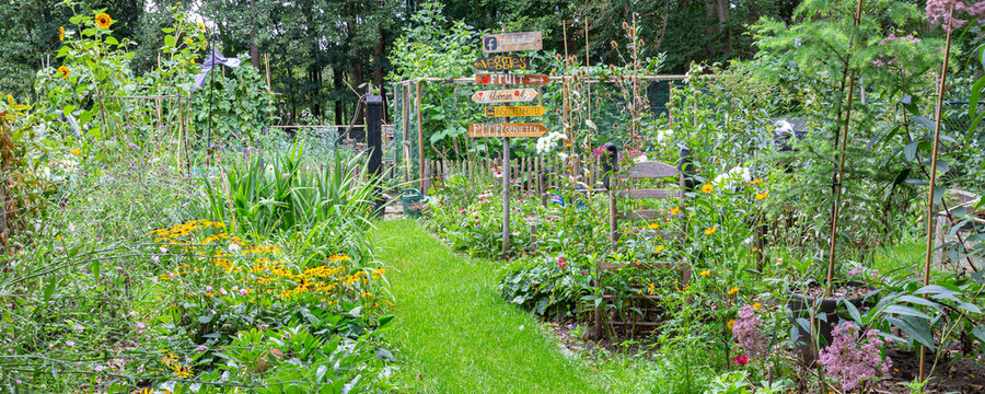 Barneveld, Netherlands- August 23, 2020: Cozy little garden with vegetables, colorful flowers,all kinds of decorations and signs with DUtch text
