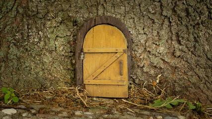 Little wooden fairy tale door in a tree trunk. fairytale forest house. Little rustic wooden fairy door in tree trunk