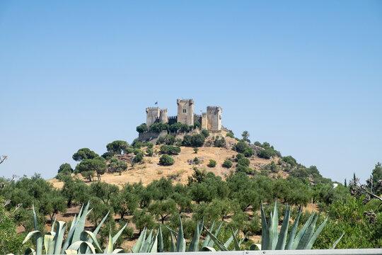 View of Almodovar castle on the top in Cordoba