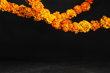 Marigold flowers Garlands on black. Dia de los muertos day, day of the dead or halloween...