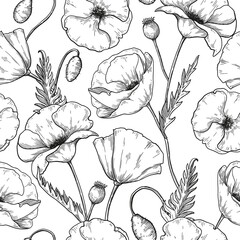 Poppy flowers seamless pattern,  sketch botanical repeating pattern. Vector floral design.