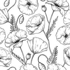 Modèle sans couture de fleurs de pavot, croquis motif répétitif botanique. Conception florale de vecteur.